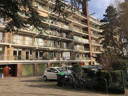Cornelie van Zantenstraat