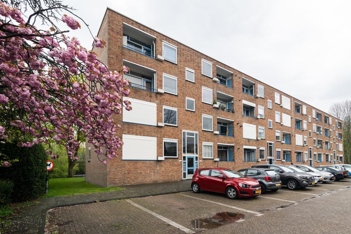 Pieter de Hooghstraat 23B