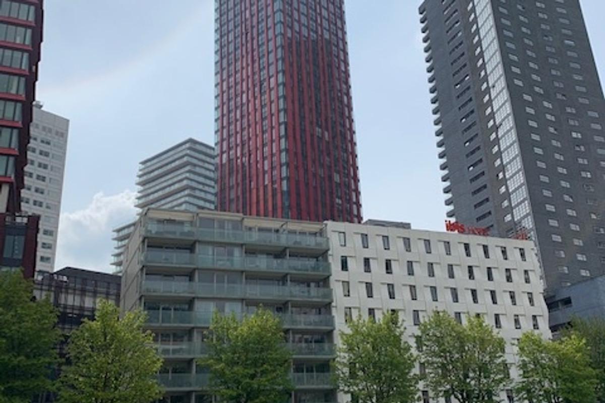 Wijnbrugstraat 224