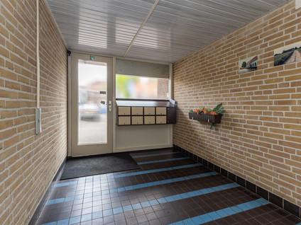 Engelenkampstraat 14