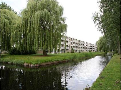 Jeroen Boschstraat 31*